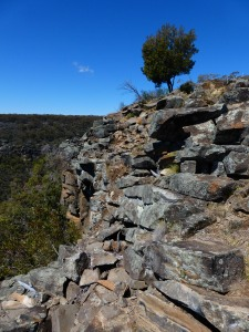 Pinnacle Lookout, Coolah Tops NP